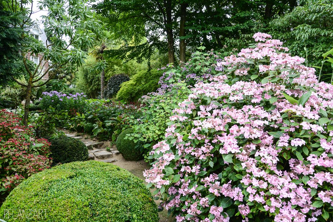 ein besuch in den wunderbaren jardins agapanthe in der normandie pflanzart. Black Bedroom Furniture Sets. Home Design Ideas