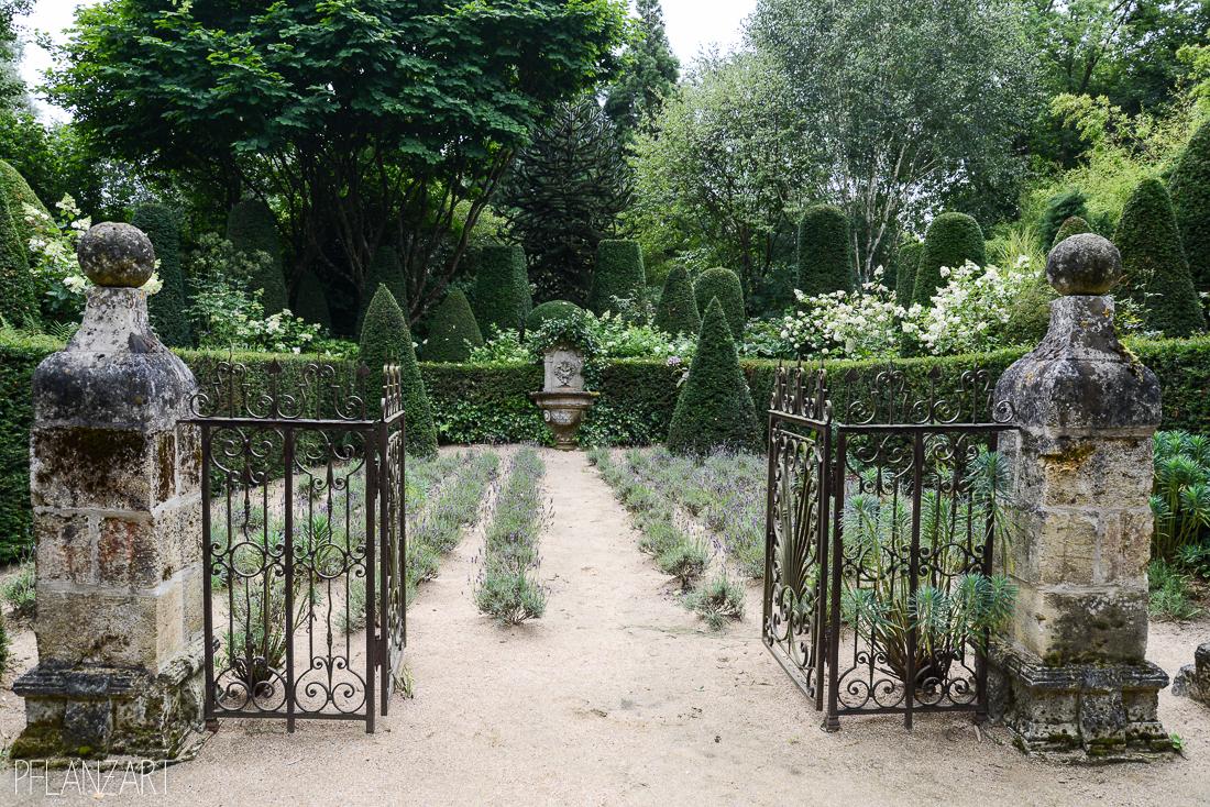 Jardin d'Agapanthe Normandie