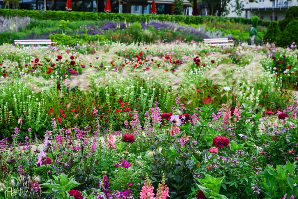 Grossflächige Sommerflorpflanzung