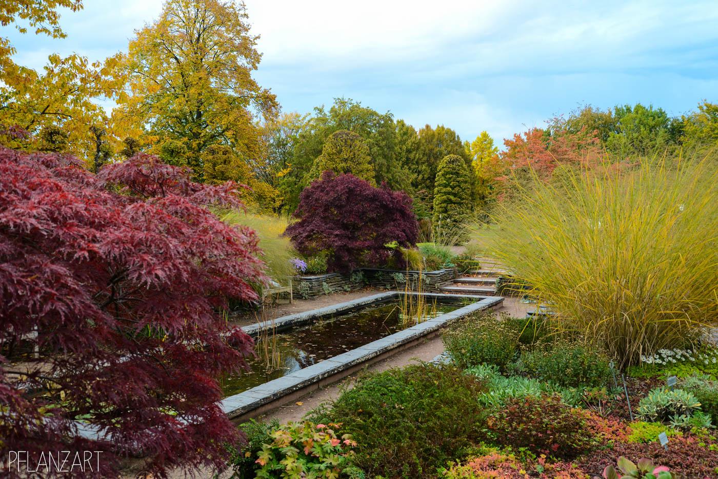 Britzer Garten in Berlin